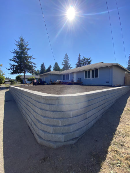 Sunlight brightens the dreams of this landscape owner! This retaining wall helped to restore a yard that was a knot of roots and dying plants, shrubs, and small trees.